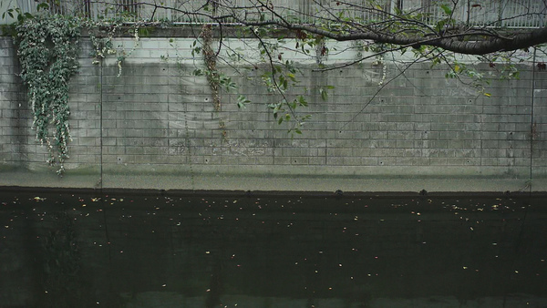 (Movie clip)都市中令人平靜的東京江戶川(EDOGAWA)。 NEX3 & Olympus PEN E.Zuiko 25/4