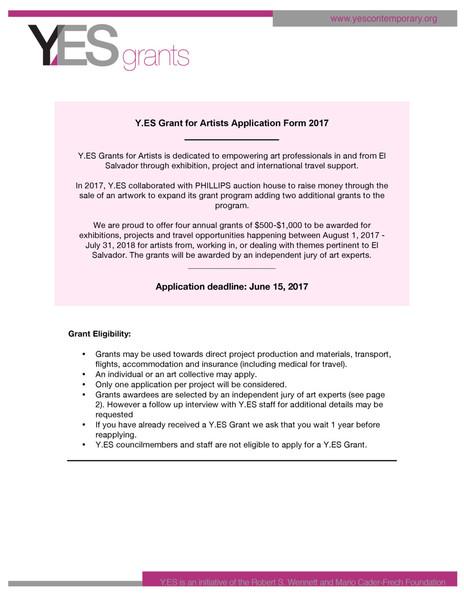 Y.ES_Grant_Application_ENG_2017.pdf