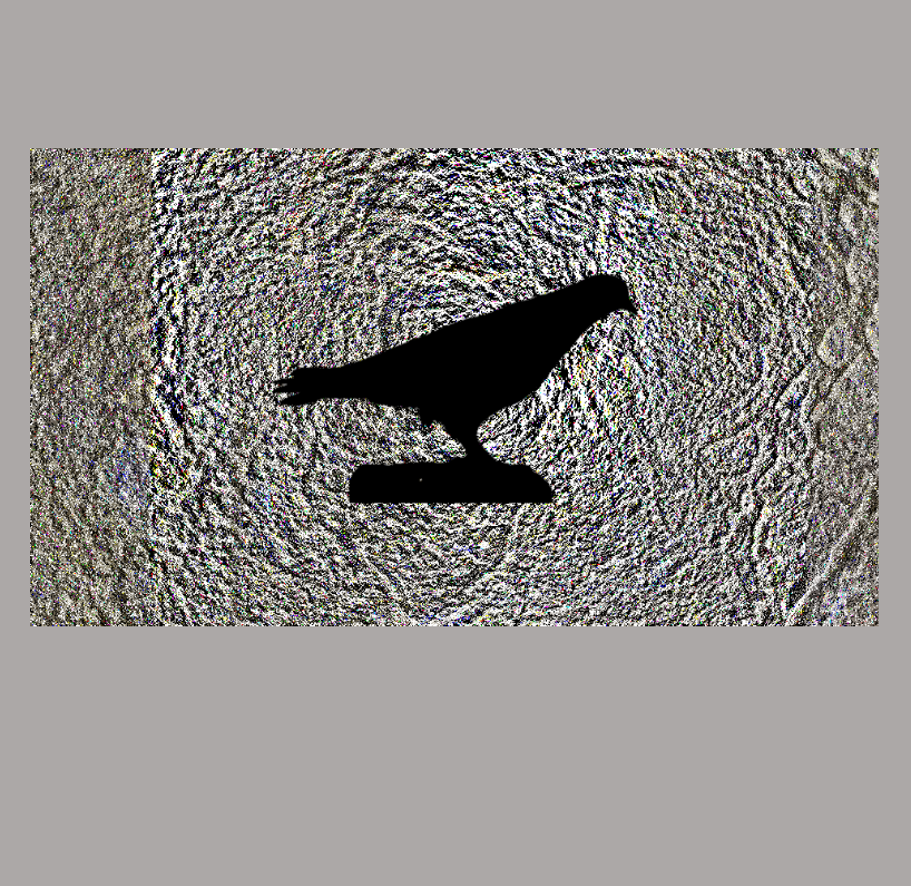 Pigeon Opposition