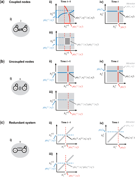 Integrated information and dimensionality in continuous attractor dynamics | Neuroscience of Consciousness | Oxford Academic