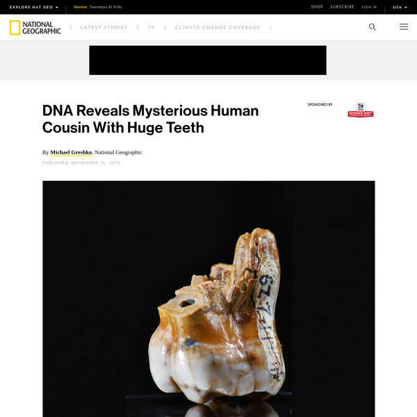 The analysis of a fossil tooth from Siberia reveals that a mysterious people known as Denisovans, discovered a mere five years ago, persisted for tens of thousands of years alongside modern humans and Neanderthals. The find underscores that our Homo sapiens ancestors shared the Eurasian continent with other human-like populations.