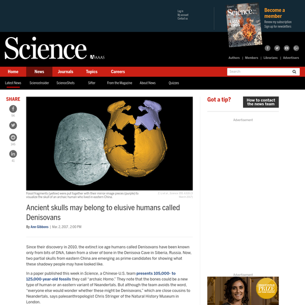 Since their discovery in 2010, the ex­tinct ice age humans called Deniso­vans have been known only from bits of DNA, taken from a sliver of bone in the Denisova Cave in Siberia, Russia. Now, two partial skulls from eastern China are emerging as prime candidates for showing what these shadowy people may have looked like.