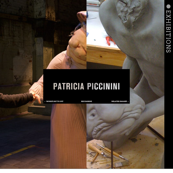 The website of contemporary visual artist Patricia Piccinini. It contains information about and images of her sculptures, photographs, videos, drawings and other artworks.
