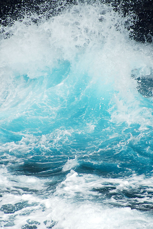 Natural-Waves-Designspiration.jpeg