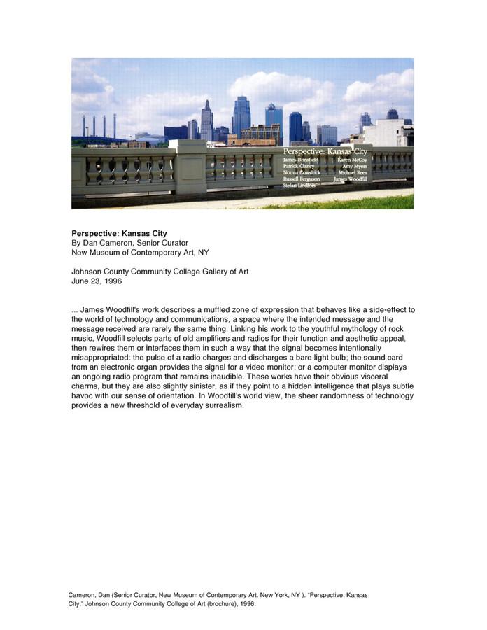 Cameron-Perspective-1996.pdf