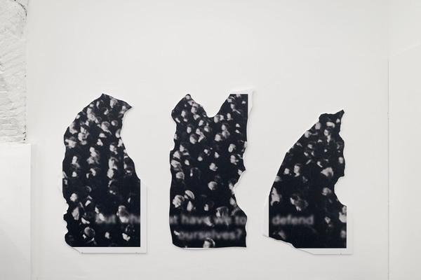 Anna-Sophie Berger, zelo, 2017