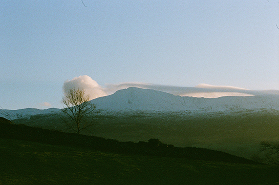 A snow-topped mountain in Wales with wispy clouds just above its peak and a tree in the foreground
