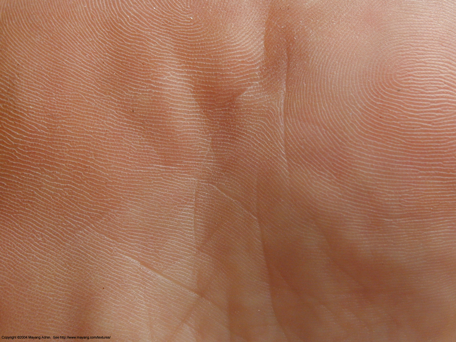 skin_bottom_of_foot_071298.JPG