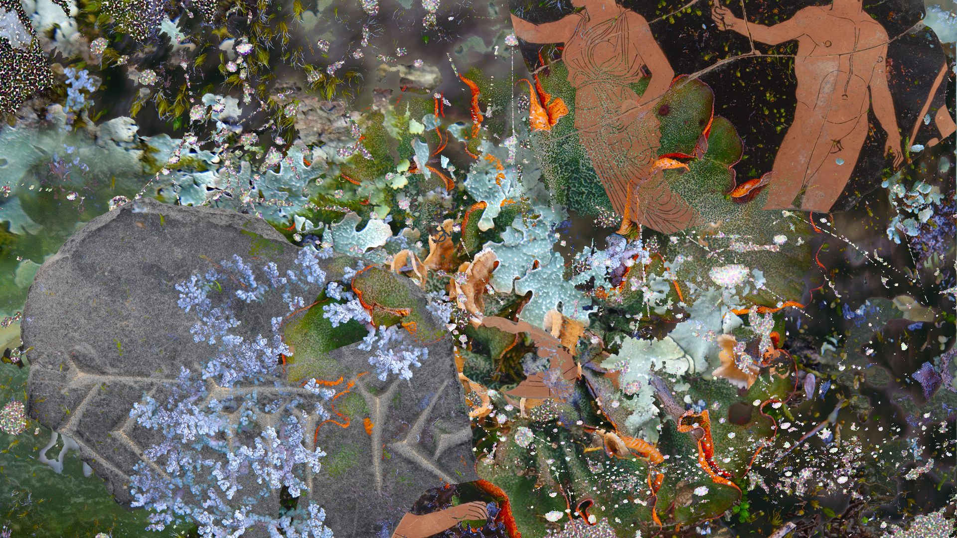 A collage with fragments of pottery and stone carvings, a spiderweb covered in dewdrops and colourful lichens