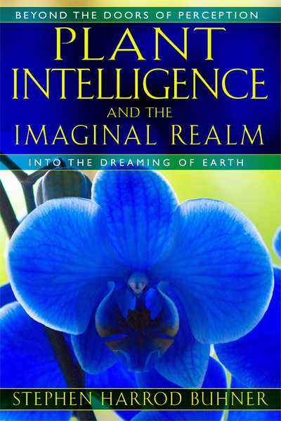 http://www.worldcat.org/title/plant-intelligence-and-the-imaginal-realm-beyond-the-doors-of-perception-into-the-dreaming-earth/oclc/966547295