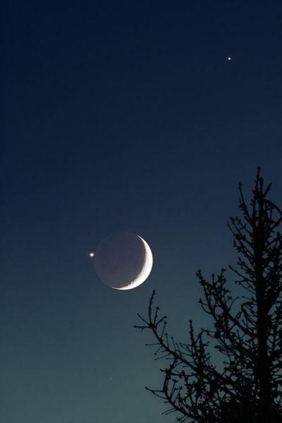 2c43f4cb3c2174baddc62620065153f3-luna-moon-sun-moon-stars.jpg