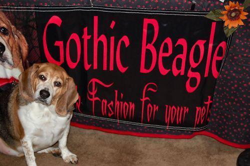 gothic-beagle.jpg