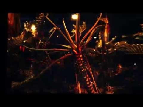Cyprien Gaillard - Nightlife 2