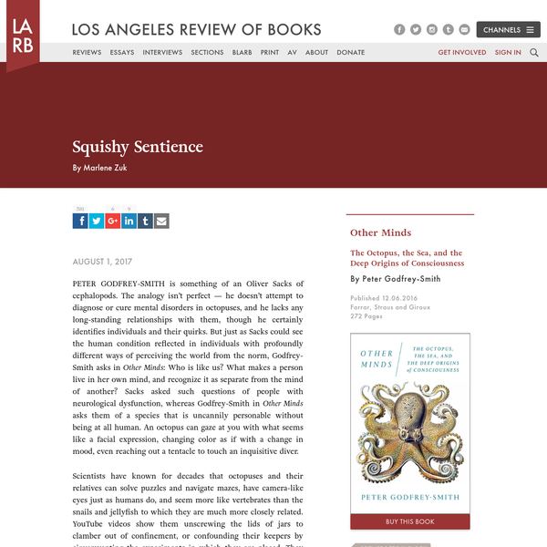 Squishy Sentience - Los Angeles Review of Books