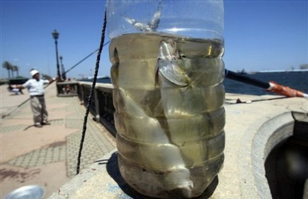 Libyan-fisherman-fishes-next-to-his-day-catch-in-Tripoli-Libya.jpg