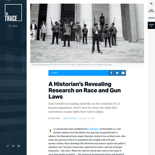 A Historian's Revealing Research on Race and Gun Laws