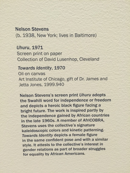 Museum of Contemporary Art Chicago, _The Freedom Principle: Experiments in Art and Music, 1965 to Now_, 2015.