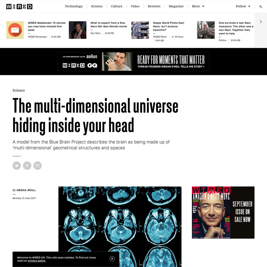 The multi-dimensional universe hiding inside your head