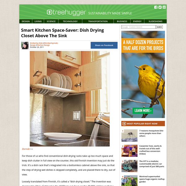 Smart Kitchen Space-Saver: Dish Drying Closet Above The Sink