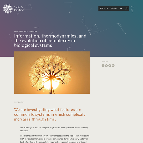 Projects: Information, thermodynamics, and the evolution of complexity in biological systems | Santa Fe Institute