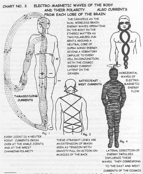 8a445b49c2fd26a764c74a296e0f6cc1-chakra-chart-the-human-body.jpg