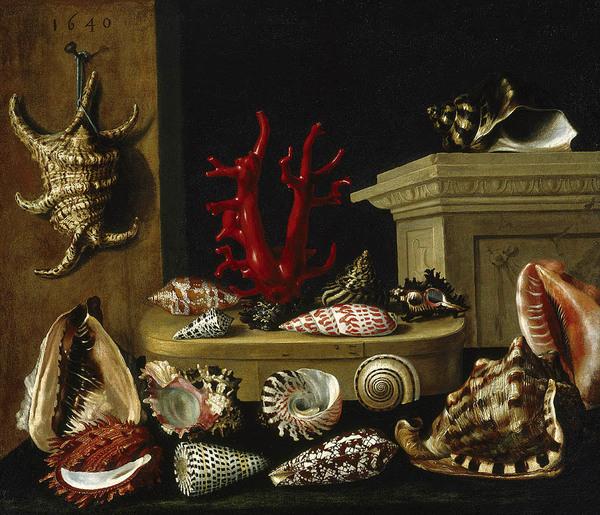 Jacques Linard, Nature morte aux coquillages et au corail, 1640