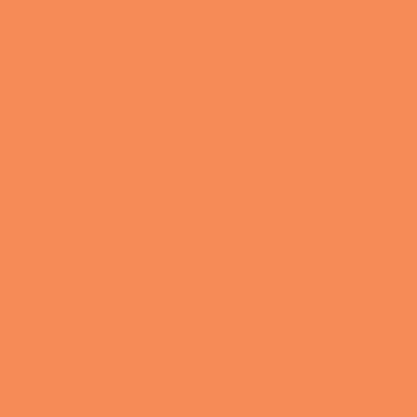 Color_icon_orange_700.jpeg
