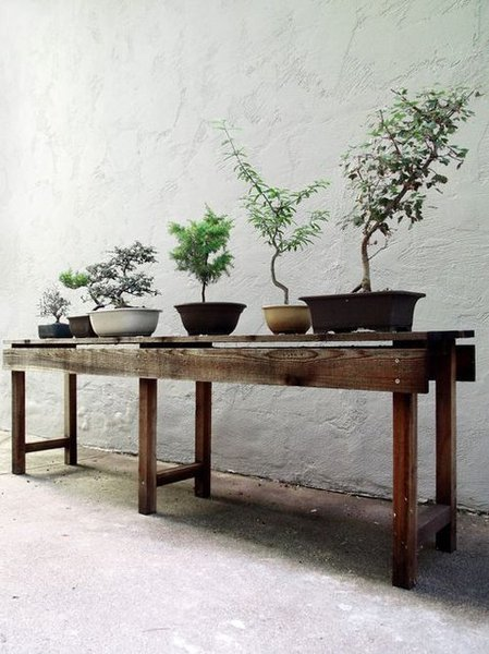 Scout-Regalia-Planting-Table.jpeg