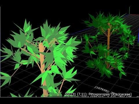 Plant evolution simulator: Evolving complex trees to capture sunlight