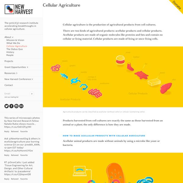 Cellular Agriculture