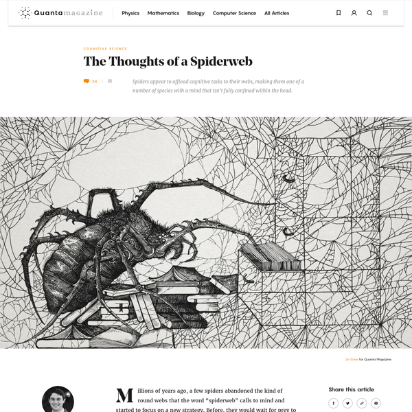 """Millions of years ago, a few spiders abandoned the kind of round webs that the word """"spiderweb"""" calls to mind and started to focus on a new strategy. Before, they would wait for prey to become ensnared in their webs and then walk out to retrieve it."""