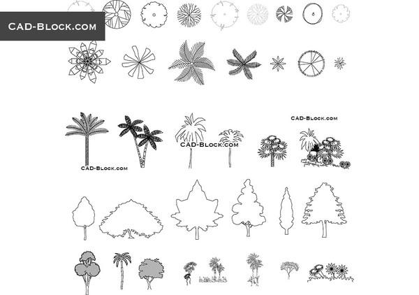 1473662852_trees_plan_elevation.jpg