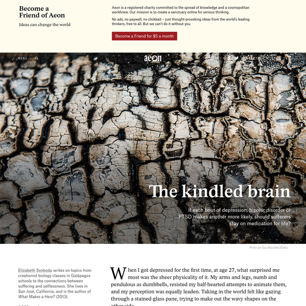 Should the 'kindling' concept direct mental-health treatment? - Elizabeth Svoboda   Aeon Essays