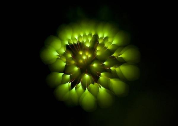 04-daveyj-long-exposure-fireworks_905.jpg