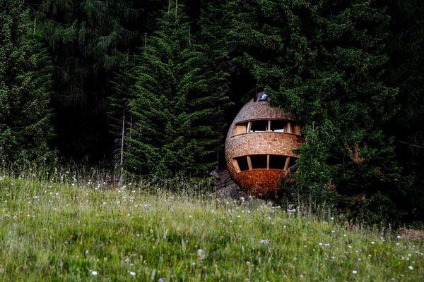 pine_cone_shaped_treehouse_claudio_beltrame2.0.jpg