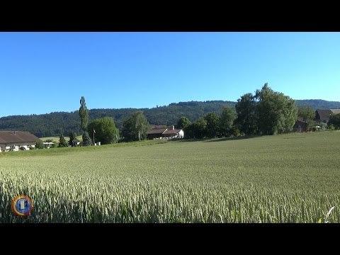 Bedeutung der Sirenensignale in der Schweiz