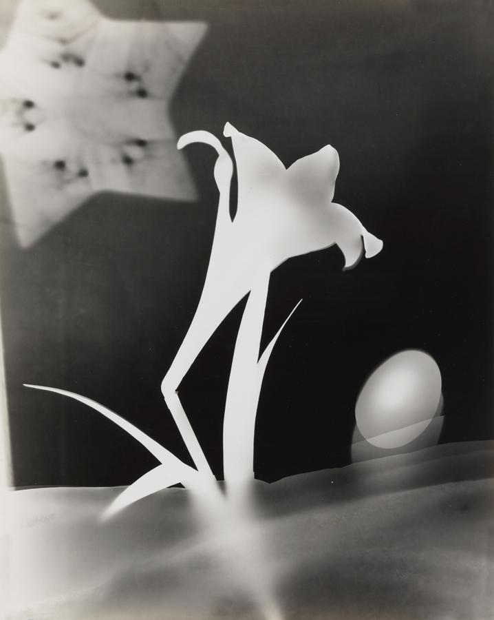 György Kepes - Lily and Egg (1939-1940)
