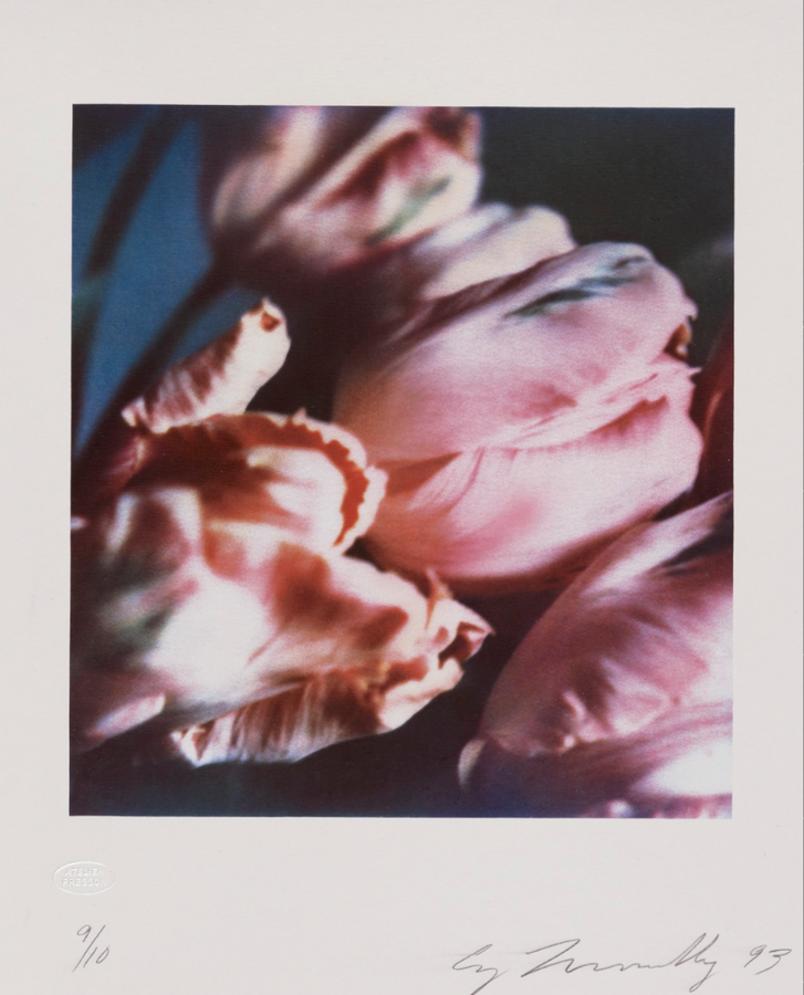 Cy Twombly, Tulips III no. 1, 1993 - Carbon print