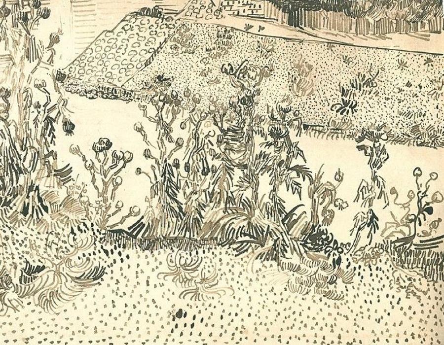 Vincent van Gogh - Thistles Along the Roadside (1888)