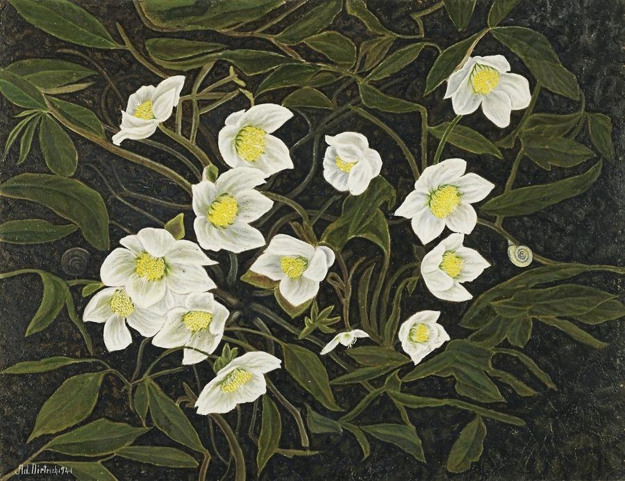 Adolf Dietrich (Swiss, 1877-1957), Christrosen [Christmas Roses], 1941. Oil on cardboard, 38.5 x 49 cm.