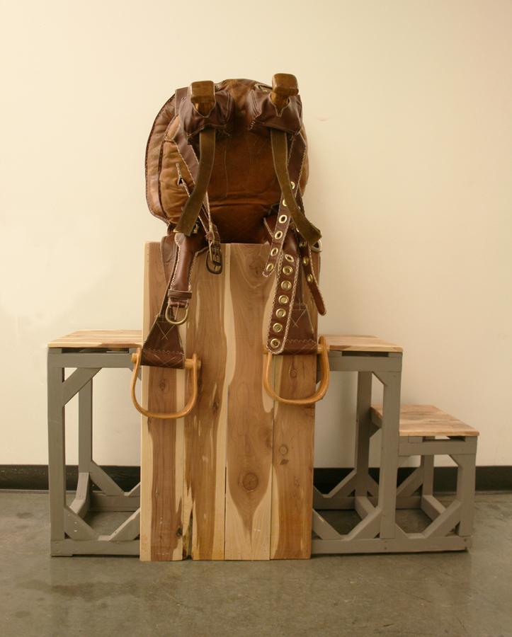 2011 Theresa Hitchcock-The Piggyback Saddle