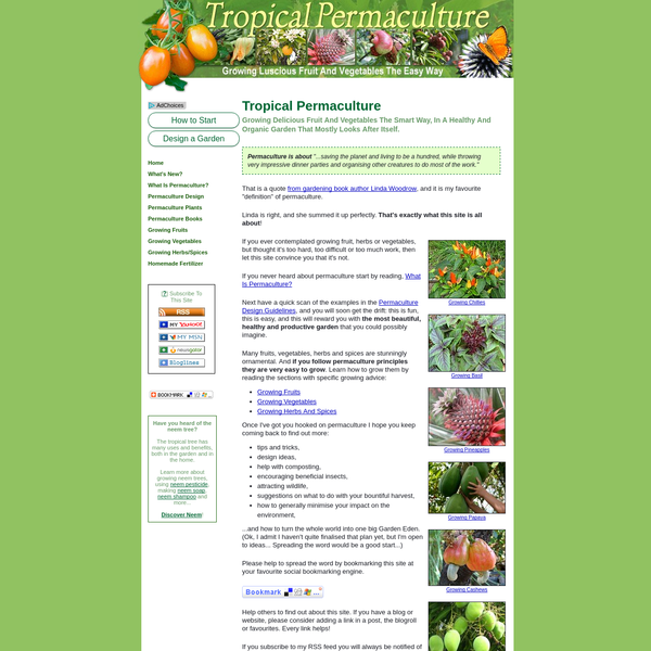Tropical Permaculture Gardens: Growing Fruits And Vegetables The Easy Way
