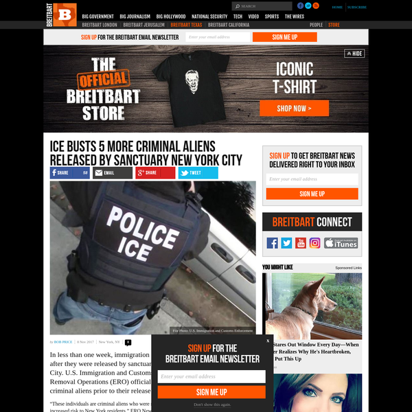 ICE Busts 5 More Criminal Aliens Released by Sanctuary New York City