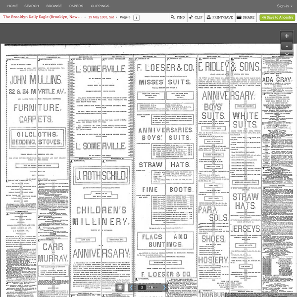 19 May 1883, Page 3 - The Brooklyn Daily Eagle at Newspapers.com