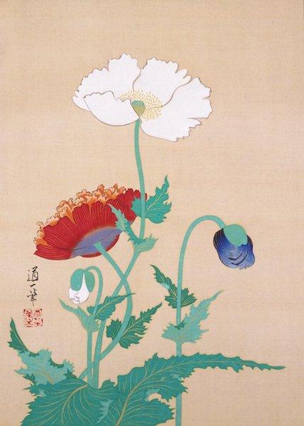 Sakai Dōitsu - Poppies, late 19th - early 20th century Ink and color on silk Source: https://collections.artsmia.org/art/118294/poppies-sakai-doitsu