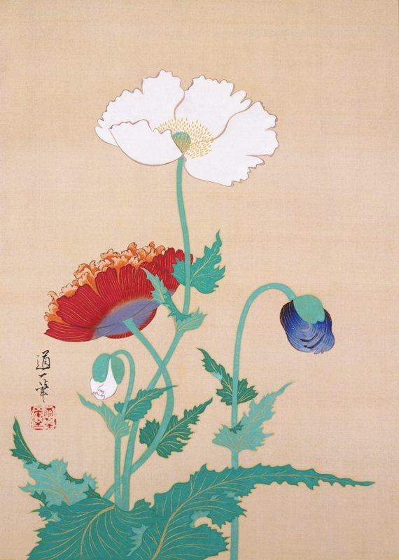 Sakai Dōitsu - Poppies, late 19th - early 20th century