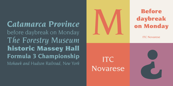 """ITC Novarese™ - Webfont & Desktop font """" MyFonts"""