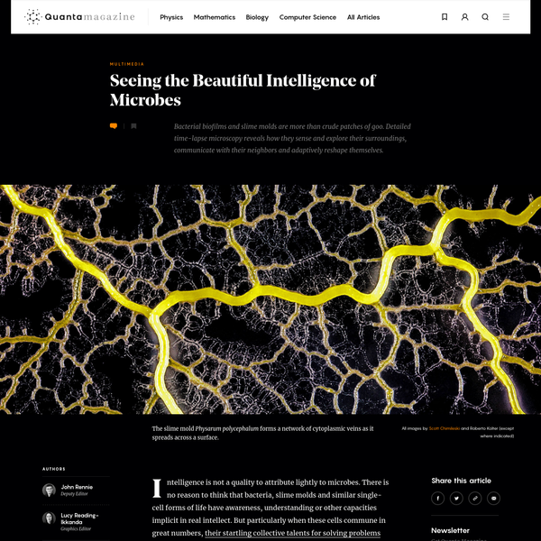 Intelligence is not a quality to attribute lightly to microbes. There is no reason to think that bacteria, slime molds and similar single-cell forms of life have awareness, understanding or other capacities implicit in real intellect. But particularly when these cells commune in great numbers, their startling collective talents for solving problems and controlling their environment emerge.