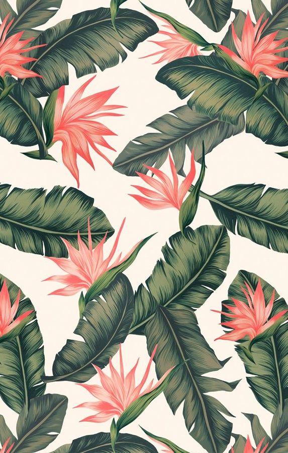 0f8403f849cc1c17b870e02f210bec20-pink-flower-wallpaper-cool-wallpaper.jpg