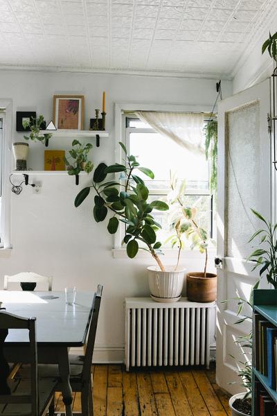 Pretty Street Botanicals | Nicole Franzen
